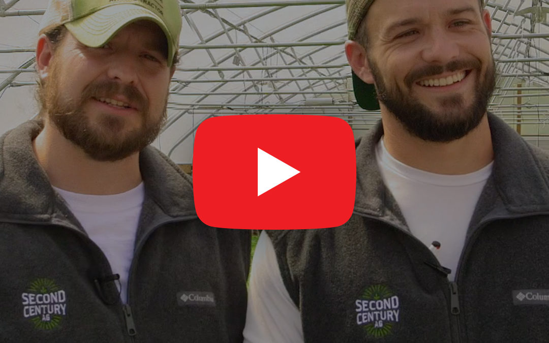 Meet The Team – The Hughes Brothers